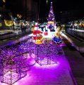 Коледната красота в Благоевград